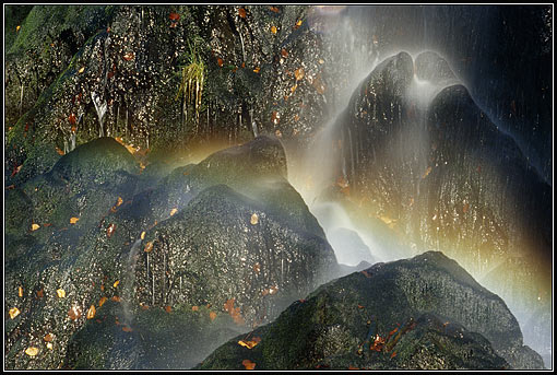 radau wasserfall harz monatsbilder 2006 kleinert naturfoto reisefoto. Black Bedroom Furniture Sets. Home Design Ideas